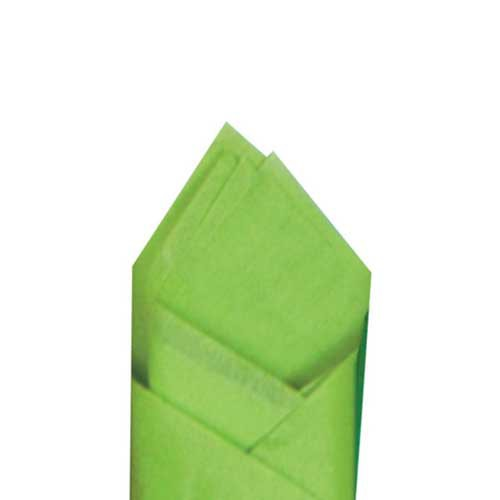 20 x 30 CITRUS GREEN TISSUE PAPER