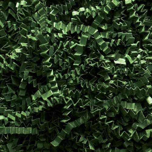 10lb. SPRING-FILL FOREST GREEN CRINKLE CUT PAPER SHRED