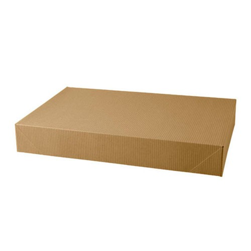 17 x 11 x 2.5 NATURAL KRAFT APPAREL BOXES
